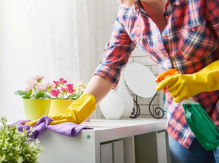 cómo limpiar rápido la casa